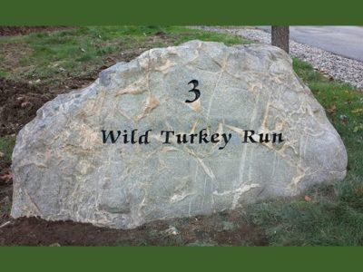 boulder-wild-turkey-run