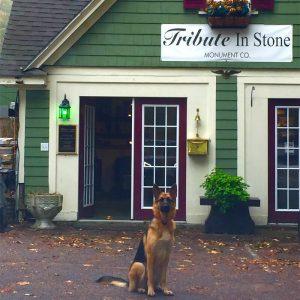 tribute-in-stone-dog-800x800
