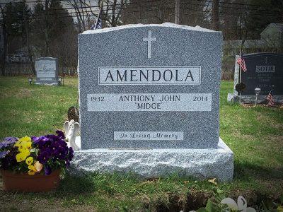 Amendola-2020-800x600