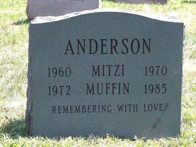 Anderson-2020-800x600