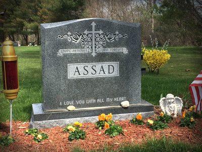 assad-2020-800x600