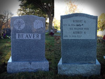 beaver-2020-800x600