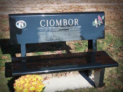 bench-ciombor-2020-800x600