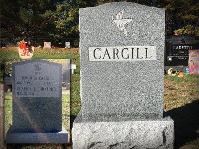 cargill-2020-800x600