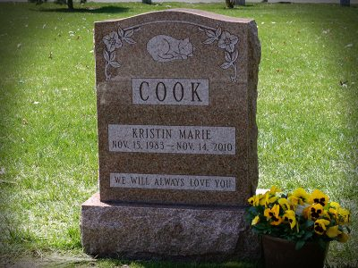 cook-2020-800x600