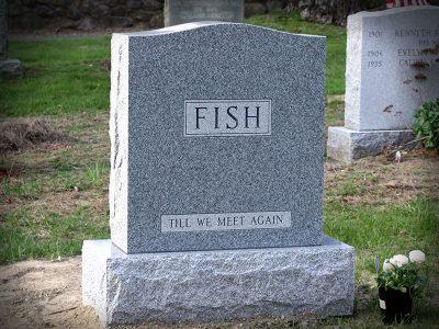 fish-2020-800x600