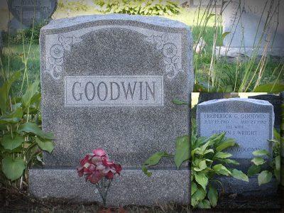 goodwin-2020-800x600