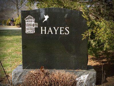 hayes-2020-800x600