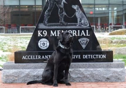 k9-memorial-featured
